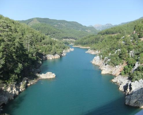 Floden løber gennem område med tæt skov