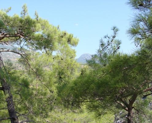 Taurusbjergenes smukke natur